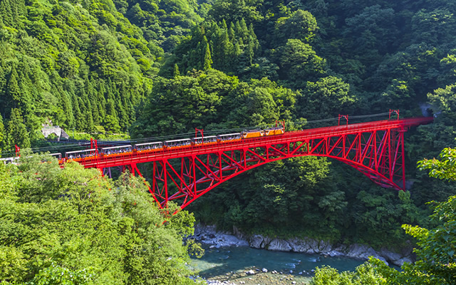 """Kurobe Gorge Railway"", Japan No1 Gorge with beautiful green spring leaves."